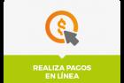 INSTRUCTIVOS DE PAGOS EN LINEA/CODIGOS DE ESTUDIANTES